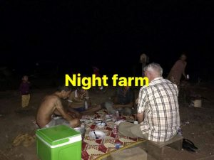 Night-Farm