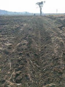 Prepare-Land-for-Organic-Farming